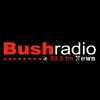 bush radio logo