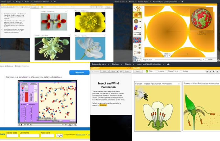 Sunflower Learning – Biology Pack