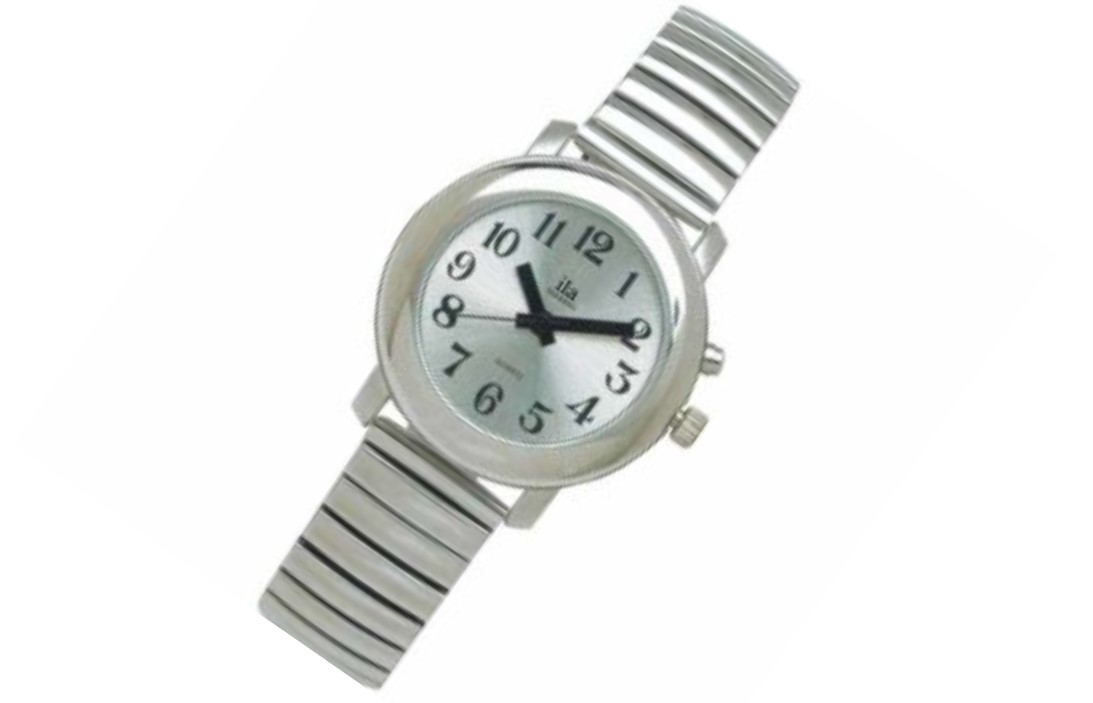 Talking Watch Silver Tone, Face & Band